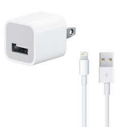 iPhone Lightning to USB Cable & 5W Power Adapter Bundle (Original)